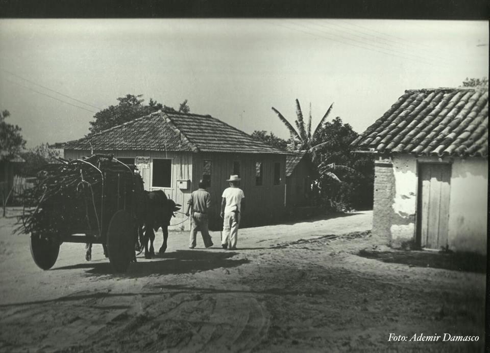 História do Sul da Ilha - parte 1