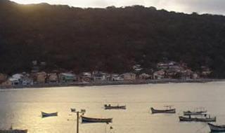 Associação dos Pescadores Artesanais da Armação do Pântano do Sul