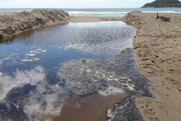 Poluição na Praia do Campeche preocupa moradores