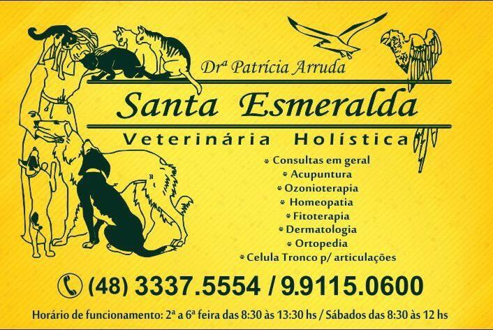 Santa Esmeralda Veterinária Holística, ideal para tratamentos de coluna do seu pet
